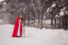 Girl in costume Little Red Riding Hood with dog like a wolf Royalty Free Stock Photography