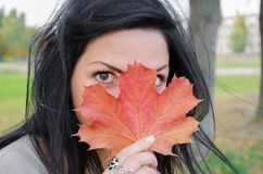 The girl covers the face with a maple leaf. Girl holding autumn green maple leaf against the background of a colorful autumn royalty free stock image