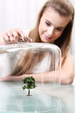 Girl covers a small artificial tree on the table, Ecological. Concept Royalty Free Stock Image