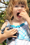 Girl with curly hair holding a bunch of grapes Stock Photos