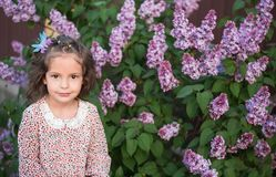 The girl with curly hair in the spring near a lilac bush. stock photography
