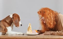 Girl with cute beagle Royalty Free Stock Image
