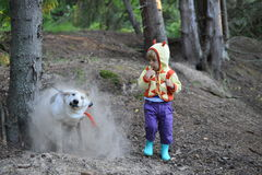 Girl and  cute dusty dog. Girl and  cute dog. the dog got out of a hole and shakes off dust. Summer forest Stock Image