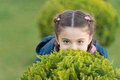 Girl cute kid green grass background. Healthy emotional happy kid relaxing outdoors. What makes child happy. Girl braids stock photo