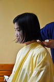 A girl is cutting hair Stock Image