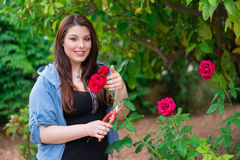 Girl cutting a rose Royalty Free Stock Photos