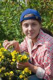 Girl cutting shrubby cinquefoil Royalty Free Stock Images