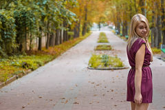 Girl d on the autumn alley. Girl dressed in a dress on the autumn alley Stock Images