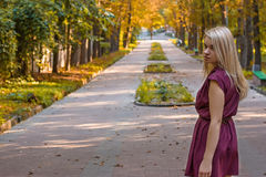 Girl d on the autumn alley. Girl dressed in a dress on the autumn alley Royalty Free Stock Photo