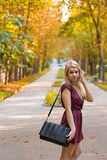 Girl d on the autumn alley. Girl dressed in a dress on the autumn alley Royalty Free Stock Photos