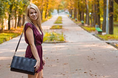 Girl d on the autumn alley. Girl dressed in a dress on the autumn alley Stock Photography