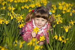 Girl and daffodils Royalty Free Stock Photos