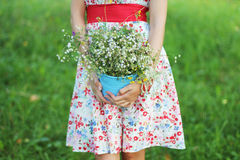 Girl with daisies Stock Photo