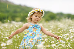 Girl in the daisy field Royalty Free Stock Photography
