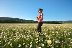 Girl in daisy wheel spring flower field royalty free stock photos