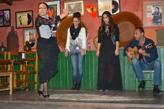 The girl dances flamenco on the Tablao, a wooden floor to reproduce the sound of shoe heels. Dancing and singing Flamenco in a bar in Sevilla, in Betis street royalty free stock images