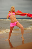 The girl dancing ashore Royalty Free Stock Photography