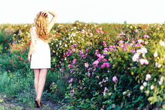 Girl dancing in a field of roses Royalty Free Stock Image
