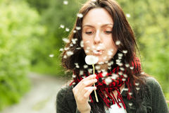 Girl with dandelion royalty free stock photo