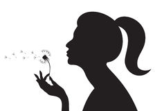 Girl with a dandelion. Silhouette of a girl blowing on a dandelion Royalty Free Stock Photos