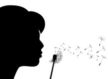 Girl and dandelion. Girl blows to a dandelion Royalty Free Stock Photo