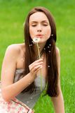 Girl with dandelion. On the green field Stock Photography