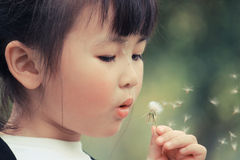Girl with dandelion Stock Photos