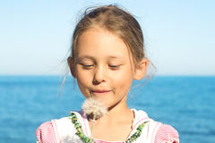 Girl with a dandelion. Portrait of a little girl blowing dandelion on a flower Stock Images