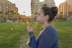 Girl and dandelion. Stock Photography