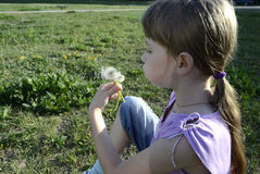 Girl with dandelion. Girl blowing on a dandelion sitting in the grass Royalty Free Stock Images