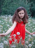 Girl in dandelion field Royalty Free Stock Image
