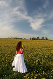Girl in dandelion field Stock Images