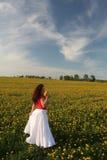Girl in dandelion field. Girl stands in dandelion field in nice summer day Stock Images