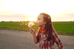 Girl with dandelion in the field Stock Photography