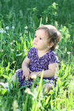 Girl  in a dandelion field Royalty Free Stock Photography