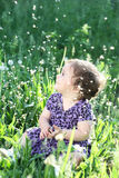 Girl  in a dandelion field Royalty Free Stock Photos