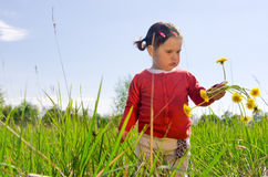 Girl with dandelion flowers Stock Photo