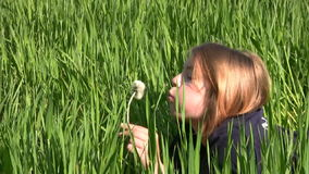 Girl, dandelion and grass. The lush green grass. A teenage girl lying on stomach and blowing on a dandelion. The sun gilded her hair and skin stock video footage