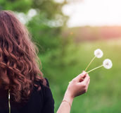 Girl with a dandelion in the hand Stock Photos
