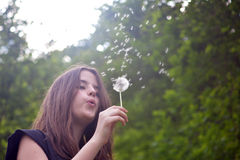 Girl and dandelion in her hand Royalty Free Stock Image