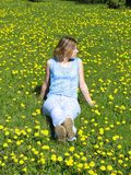 Girl on dandelion lawn Royalty Free Stock Images