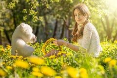 Girl on dandelion meadow Stock Photography