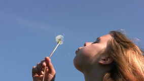 Girl, dandelion and sky. Bright cloudless sky. A teenage girl blowing on a dandelion. The sun gilded her hair and skin stock video