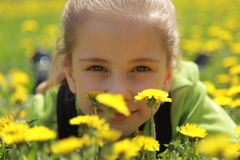 A girl is in dandelions Royalty Free Stock Photo