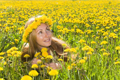 Girl among dandelions Royalty Free Stock Images
