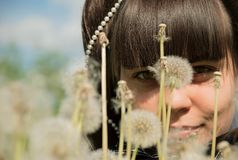 Girl in dandelions Stock Photography