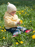 Girl and  dandelions Royalty Free Stock Photos