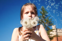 The girl with dandelions Royalty Free Stock Images