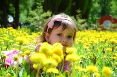 Girl in dandelions Stock Image