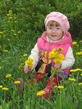 Girl with the dandelions. Girl with the bouquet of dandelions in the hands Stock Photo